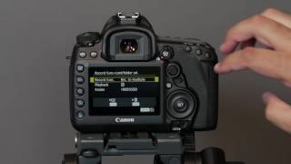 How I Set Up the Canon 5D Mark IV DSLR for Photography