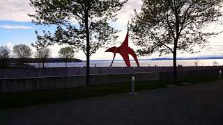 Olympic Sculpture Park.  Red Crane and God's sky show.