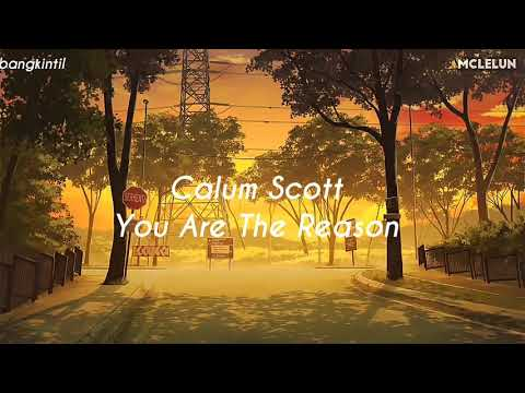 Calum Scott - You Are The Reason  ( Lirik Dan Terjemahan Indonesia )