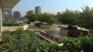 Chicago Botanic Garden Creates Largest Urban Rooftop Farm in Midwest at McCormick Place