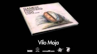 Siamese Fighting Fish - Vilo Moja