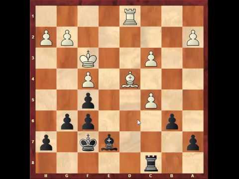 Chess: Petr Poloch 2365 - Susan Polgar 2275, Sicilian Defence http://sunday.b1u.org
