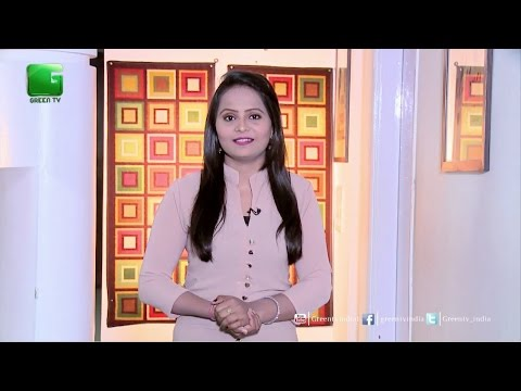 Des Diary: 12th October 2016 - Full Episode Green TV