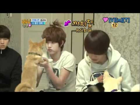 [vietsub] Birth Of A Family Ep8 - Sunggyu's Home Alone (1 3) video