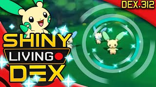 SHINY MINUN! Live Reaction! Quest For Shiny Living Dex #312   Pokemon ORAS!