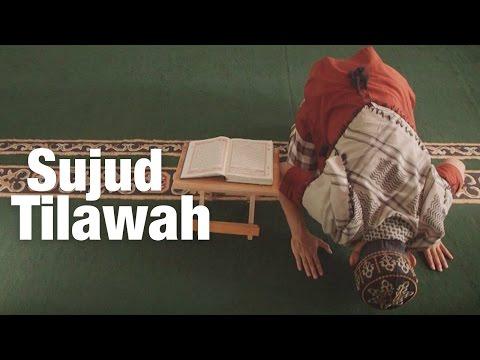 Panduan Ibadah: Sujud Tilawah