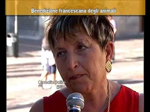 Benedizione degli animali a Pescara