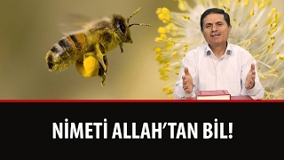 Dr. Ahmet Çolak - Nimeti Allah'tan Bil (Lem'alar - 17. Lem'a - 4. Mes'ele)