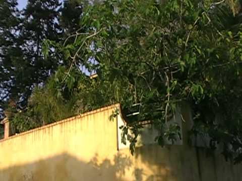 video Vacanze A Castellabate  Villa   tufi.