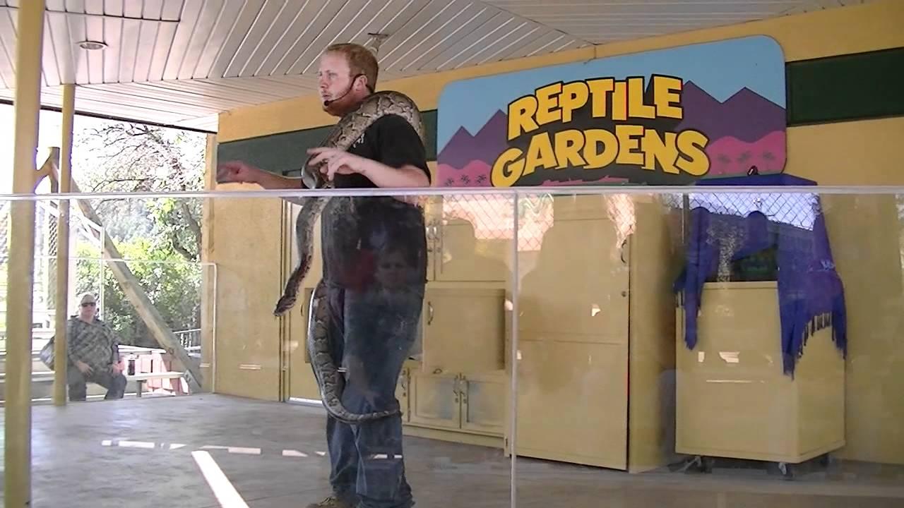 Reptile Gardens Snakes at Reptile Gardens sd