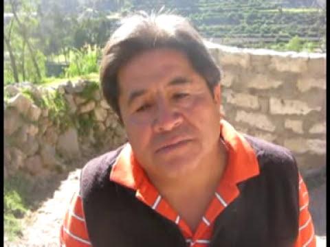 Selva Alegre, Arequipa