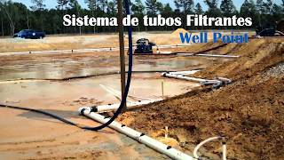 Sistema wellpoint