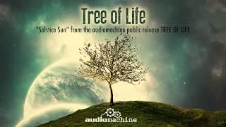 Audiomachine - Solstice Sun