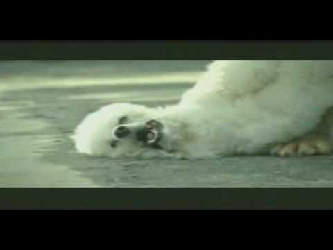 Ki Chudai Aur Bahan Story Free MP4 Video Download 1 DESI