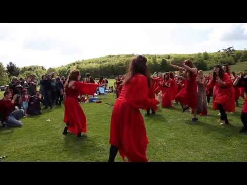 Shambush - The Ultimate Kate Bush Experience - Stanmer Park, Brighton
