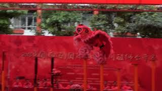 2018中國(南海)國際民族民間醒獅公開賽-廣東汕尾義興比麟堂龍獅團-雄獅飛躍險峰峻嶺妙計智除黑豹救幼獅