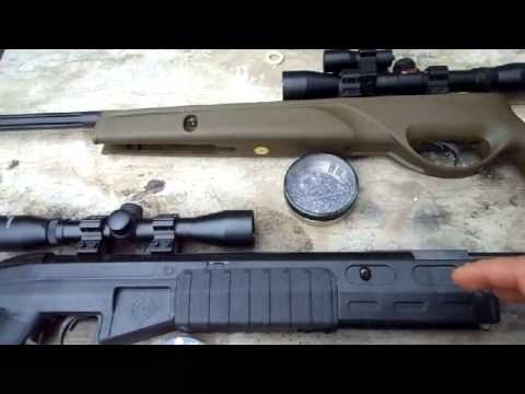 Crosman TR77 vs GAMO Varmit Hunter  Pellet Guns