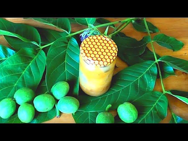 Зеленые грецкие орехи с медом рецепт