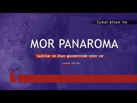 Mor Panorama 11 \ 01 \ 2018