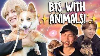 BTS WITH ANIMALS!