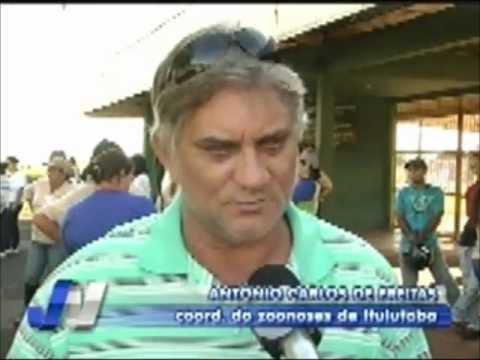 Secretário de Saúde afirma que Ituiutaba não está com epidemia de dengue