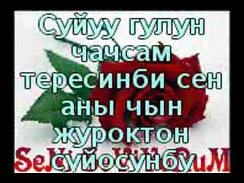Лирика Суйуу Жонундо Смс