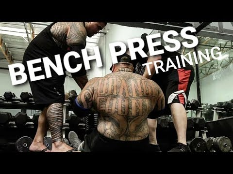 BENCH PRESS with the HEAVY HITTERS | Road to 600 competition bench