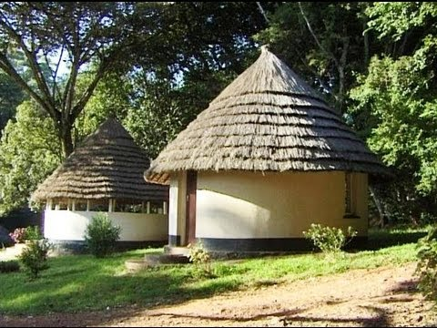 Chirinda Forest, Zimbabwe. Travel guide.