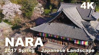 Nara, Giappone 奈良県