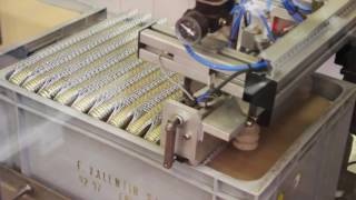 Automatic case destocking of wirehoods   Décaisseur de muselets  Valentin Thièrion