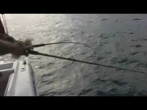 Mexico Los Barriles Tuna fishing BCS   Part3/3