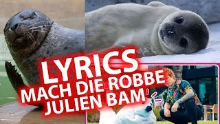 Paroles Mach die Robbe LYRICS | Songtexte zu Julien Bam feat. die Robbe | Lyric (animiert) HD