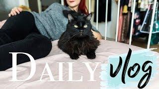 Daily Vlog | Cu Rumbu la veterinar, Jumbo & cateva unboxinguri