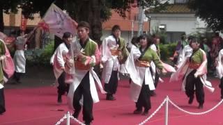 ひのよさこい2016 ~ 桜美林大学よさこいサークル桜囃子