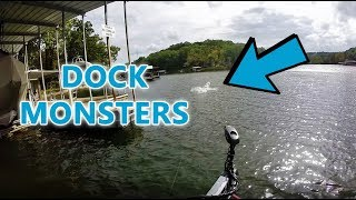 Catching HUGE Fish By DOCKS! Lake Of The Ozarks