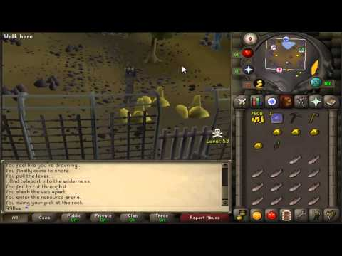 Runescape 2007 How to get to the wilderness resource arena guide
