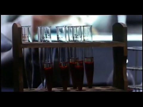 El D ía de los Muertos (1985) - Película Completa | En Español