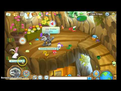 Animal Jam: Claws 'n Paws Glitch