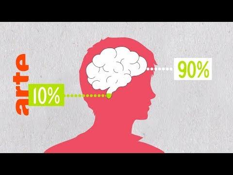 Benutzen wir nur 10% unseres Gehirns? | Data vs. Fake | ARTE