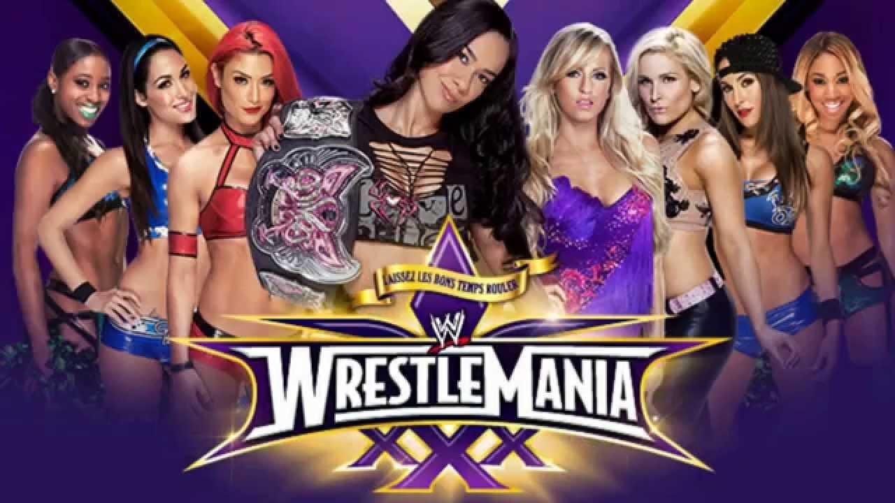 Undertaker Vs Brock Lesnar Wrestlemania 30 Wwe Wrestlemania 24 Ma...