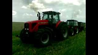 Massey Ferguson 8280 - rescue of stuck Zetor 7245