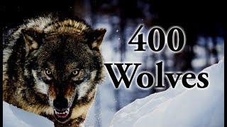 Download Lagu Legends of Nature: Super Pack of 400 Wolves Gratis STAFABAND