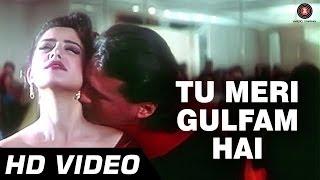 Tu Meri Gulfam Hai Video Song