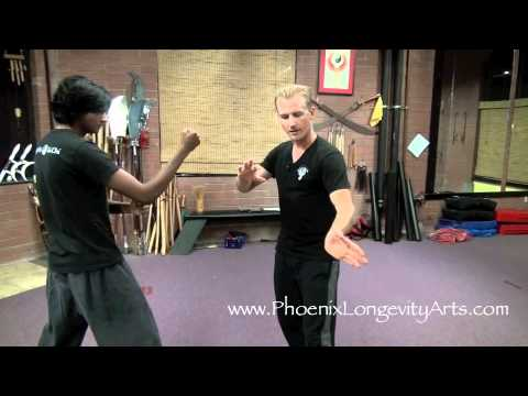 Incredible Tai Chi, Fighting For Real! Image 1