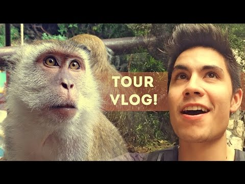 TOUR VLOG Ep.1: Monkey Business