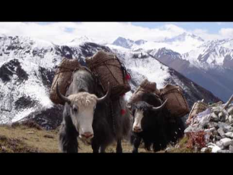 Himalayan Dreams | NEPAL TOUR | BHUTAN TOUR | TIBET TREK | INCREDIBLE INDIA.