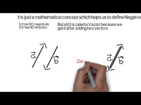 How Do You Define a Vector  WIRED