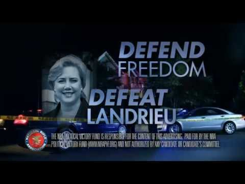 Defend Freedom, Defeat Mary Landrieu