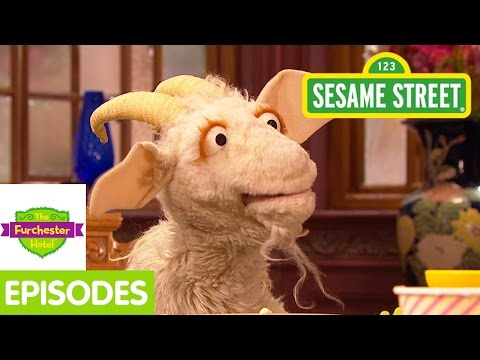 Furchester Hotel: A Goat Eats All Of Elmo's Things! video