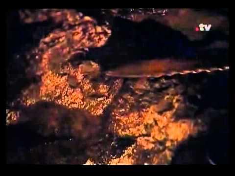 La Rinconada, el poblado mas alto del planeta 2